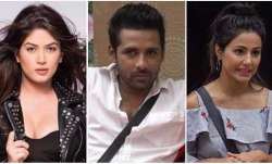 Puneesh-Bandgi relationship in Bigg Boss 11 is fake, says