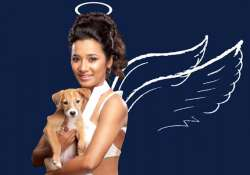 gulaab gang actress tannishtha turns angel for peta