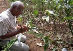 bengal districts have no entomologists