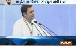 Rahul Gandhi addresses Congress plenary session in New