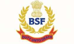 BSF Head Constable Result 2019