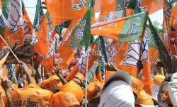 Delhi Assembly Polls: BJP holding 250 big, small rallies on Friday
