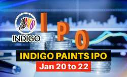 Indigo Paints IPO