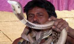 Ludhiana, Snake charmer, COVID patient, positive test, COVID infection, coronavirus patients, indige