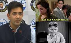 Twitter user says 'I want Raghav Chadha, not electricity', AAP leader's response goes viral