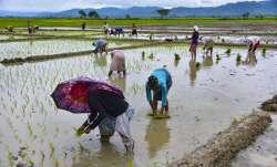 farmer suicide chhattisgarh