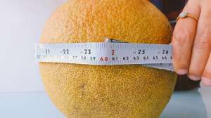 Picture of India's largest orange found in Nagpur goes viral; leaves Twitter amused
